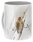 Common Redpoll Coffee Mug