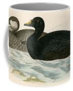 Common Scoter Coffee Mug