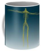 Conceptual Image Of Human Nervous Coffee Mug