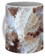 Conches Coffee Mug