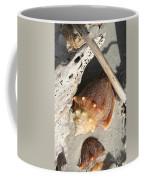 Conchs With Driftwood I Coffee Mug