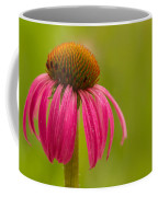 Coneflower - Summer Color Coffee Mug