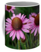 Coneflowers - Echinacea Purpurea Coffee Mug