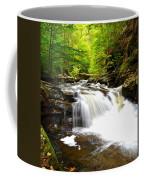 Conestoga Falls Coffee Mug
