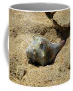 Conshohocken Maple Syrup Coffee Mug