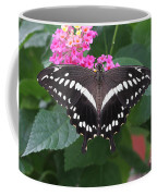 Constantines Swallowtail Coffee Mug