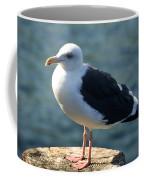 Contemplating Life Of A Sea Gull Coffee Mug