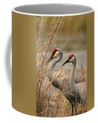 Content Pair Coffee Mug