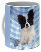 Continetal Toy Spaniel Or Papillon Dog Coffee Mug
