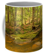 Cook Forest Rocks And Roots Coffee Mug