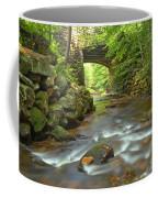 Cook Forest Stream Under The Bridge Coffee Mug