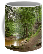 Cook Forest Toms Run Steps Coffee Mug