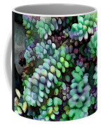 Cool Hued Burro's Tails In The Hot Desert Coffee Mug