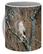 Coopers Hawk 0741 Coffee Mug