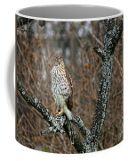 Coopers Hawk 0745 Coffee Mug