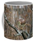 Coopers Hawk 0750 Coffee Mug