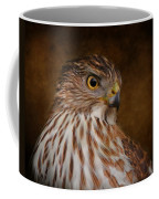 Coopers Hawk Portrait 2 Coffee Mug
