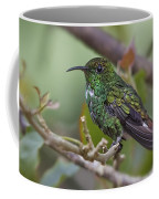 Copper-headed Emerald Beauty Coffee Mug