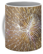 Coral Closeup Coffee Mug