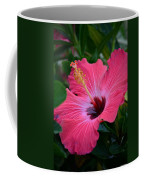Coral Hibiscus Coffee Mug