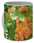 Coral Shower Tree Coffee Mug
