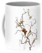 Corkscrew Coffee Mug by Anne Gilbert