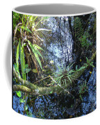 Corkscrew Swamp 16 Coffee Mug