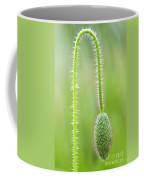 Corn Poppy Bud Coffee Mug
