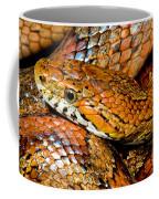 Corn Snake Coffee Mug