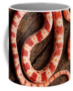 Corn Snake P. Guttatus On Tree Bark Coffee Mug