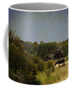 Corolla Pony Coffee Mug