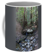 Corte Madera Creek On Mt. Tam In 2008 Coffee Mug