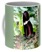 Costa Rican False Postman Butterfly Coffee Mug