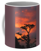 Costa Rican Sunset Coffee Mug