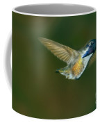 Costa's Hummingbird Feeding Coffee Mug