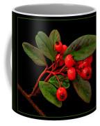 Cotoneaster Coffee Mug