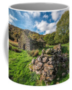 Cottage Ruin Coffee Mug by Adrian Evans