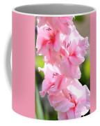 Cotton Candy Gladiolus Coffee Mug
