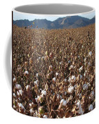 Cotton Fields Back Home 2014 Coffee Mug