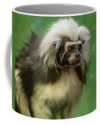 Cotton-top Contemplation Coffee Mug