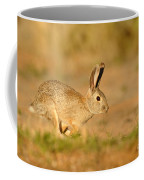 Cottontail Rabbit Coffee Mug
