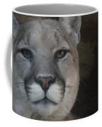 Cougar Digitally Enhanced Coffee Mug