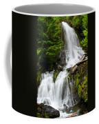 Cougar Falls Coffee Mug