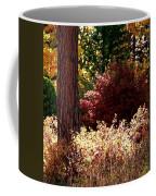 Country Color 28 Coffee Mug