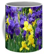Country Road Irises  Coffee Mug