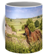 Countryside Horse Coffee Mug
