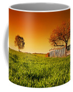 Countryside Orchard Landscape At Sunset. Spring Time Coffee Mug