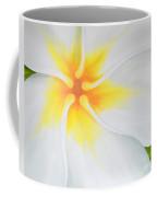 Courtade Gold Plumeria Coffee Mug