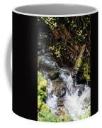 Covell Creek 4 Coffee Mug