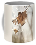 Covered With Ice Maple Leafe On A Sunny Day Coffee Mug